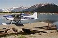 Wings Coastal Glacier 497.jpg