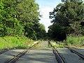 Woburn Branch Railroad crossing of Eames Street, June 2015.JPG