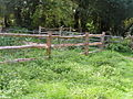 Wooden fences near the junction of 2 paths, Haysden Country park. - geograph.org.uk - 1051195.jpg