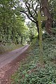 Wye Valley Walk in Brockhampton - geograph.org.uk - 55582.jpg