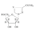 Xymtex-esempio-2.png