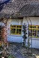 Yellow window (8065469255).jpg