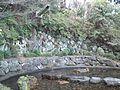 Yoshimine-dera Temple - Waterfall of Shôren.jpg