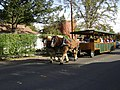 Yountville, California - panoramio - UncleVinny (18).jpg