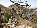 Zas Naxos Greece 2007081615220N05268.jpg