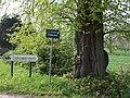 Zottegem Leeuwergem Kasteeldreef 1 Welkomstlinden (6) - 187161 - onroerenderfgoed.jpg