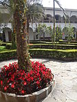 (Iglesia de San Francisco, Quito) Convento pic.ab07 interior courtyard.JPG
