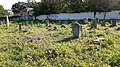 Єврейське кладовище м. Хмельницький 13.jpg