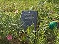 Братская могила советских воинов, партизан и жертв фашизма в окрестностях деревни Жестяная Горка 1.jpg