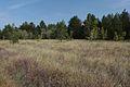 Вид на юго-восток - panoramio (6).jpg