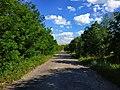 Дорога на с. Вищі Вовківці, фото 5.jpg