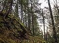 Карасьи горы - panoramio (27).jpg