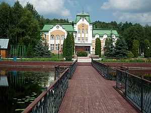 Khotynetsky District - Resort hotel in Orlovsky Forest, Khotynetsky
