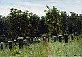 Левитан Пасека.jpg
