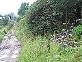 Невская Дубровка, свалка мусора на склоне за гаражами. - panoramio.jpg