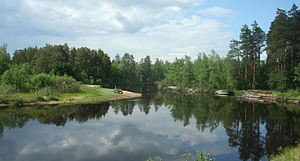 Oka Nature Reserve - Pra River in Oksky Reserve