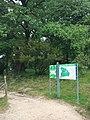 Парк санаторію Карпати. Фото 2.jpg