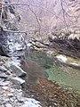 "Резерват ""Стара река"" 16.jpg"