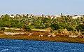 على ضفاف النيل.jpg