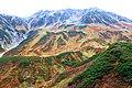 室堂平 - panoramio (46).jpg