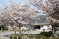 岡崎城 (愛知県岡崎市康生町) - panoramio.jpg