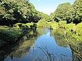 有玉緑地公園の池 - panoramio.jpg