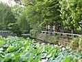 杭州.西湖-曲院风荷 - panoramio (4).jpg