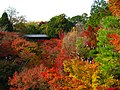東福寺の紅葉 (Autumn Leaves at Tofuku-ji) 21 Nov, 2009 - panoramio.jpg