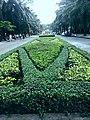 海南国际旅游岛——海口金牛岭公园大道景观( 南偏西向) - panoramio.jpg