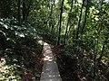 闽山天景园步道 - Footpath in Minshan Tianjing Garden - 2015.07 - panoramio.jpg
