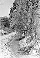 01925 Grand Canyon Historic Supai Village Irragation Ditch 1949 (6904876421).jpg