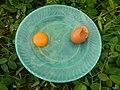 08726jfFilipino foods fruits Bulacan landmarksfvf 20.jpg
