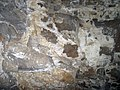08 Gypsum crust, walls of Dyer Avenue 1 (8324960439).jpg