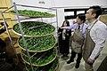 11.10 副總統參訪「農民市集」及「新埔鎮農會產業交流中心」 (50585409758).jpg