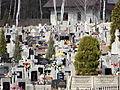 131413 Cemetery in Jeruzal (powiat miński) - 03.jpg