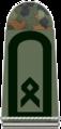 154-Oberfähnrich Heeresfliegertruppe.png