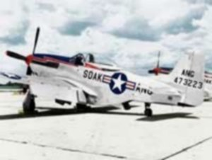 South Dakota Air National Guard - South Dakota ANG North American F-51D Mustang 44-73223