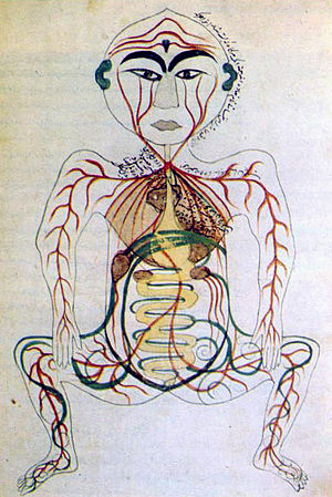 17th century Persian digestive system