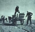 1952-05 劳模耿长锁农业生产合作社.png
