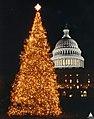 1994 U.S. Capitol Christmas Tree (31805188505).jpg