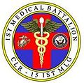 1st Medical Battalion.jpg
