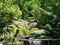 2008 07 Botanical Garden Meran 70180R0120.jpg