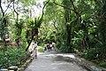 2010 07 19370 7200 Wenshan District, Taipei, Zoo, Concrete paving slabs, Taiwan.JPG
