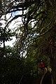 2012-10-26 15-37-42 Pentax JH (49283594972).jpg
