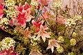 2013 Melbourne International Flower and Garden Show (8584045689) (3).jpg