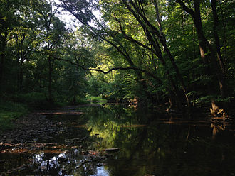 Stony Brook (Millstone River tributary) - View up the Stony Brook from within the Stony Brook–Millstone Watershed Association's nature reserve in Hopewell Township