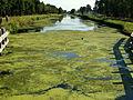 20140723 Sluis (canal lock) 7 in Zuidwillemsvaart; Helmond 05.jpg