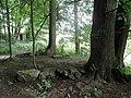 20140809105DR Röhrsdorf (Dohna) Schloßpark Röhrsdorfer Grund.jpg