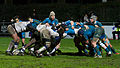 2014 Women's Six Nations Championship - France Italy (145).jpg