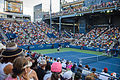 2015 US Open Tennis - Tournament - Donald Young (USA) def. Viktor Troicki (SRB) (22) (21206135571).jpg